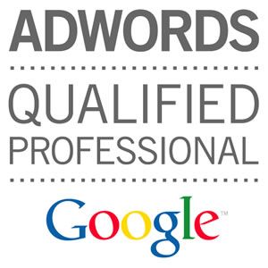 Partner Certificato Google ADWORDS